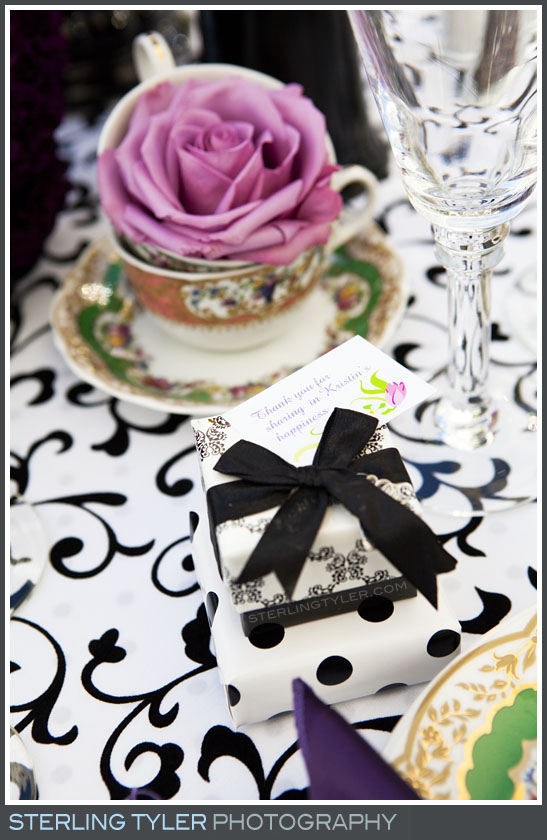 Calabasas Bridal Shower Photography