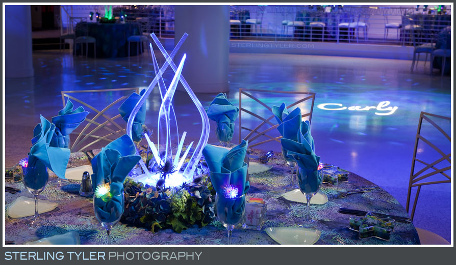 The Celebrations by Turnip Rose Bat Mitzvah beach Themed Reception Photos